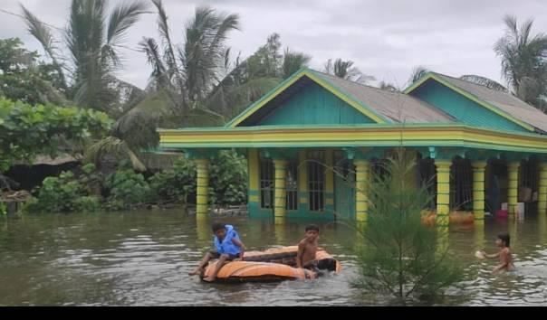 Rumah-rumah warga di Kabupaten Tanah Laut Provinsi Kalimatan Selatan tampak terendam banjir, Sabtu (16/1/2021) (Sumber: bnpb.go.id)