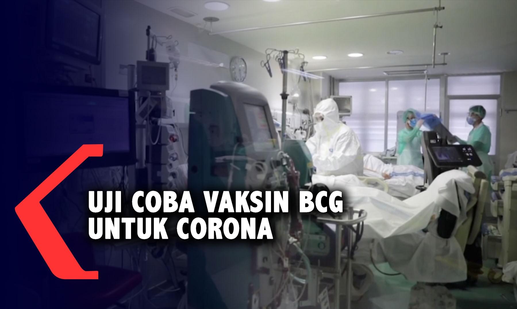 penelitian-baru-uji-coba-vaksin-bcg-untuk-virus-corona